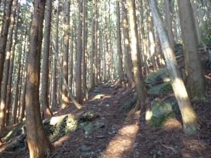西日本最高峰 石鎚山へ♪
