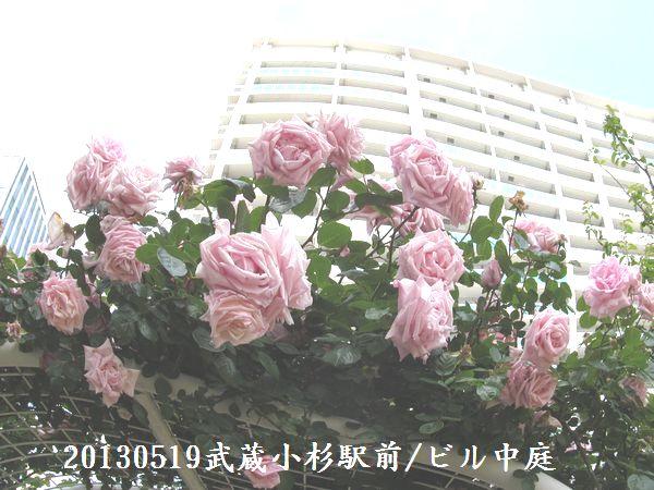 0519nakahawa04.jpg