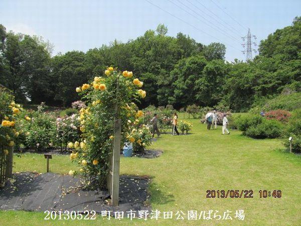0522notsuda09.jpg