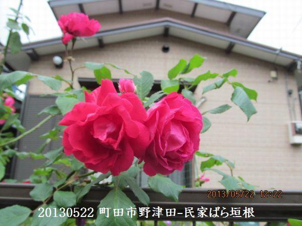 0522notsuda18.jpg