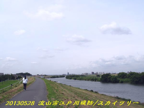 0528edogawa13.jpg