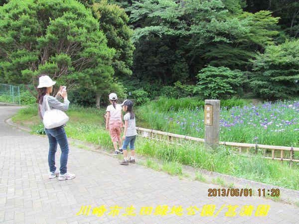 0601shobuen04.jpg