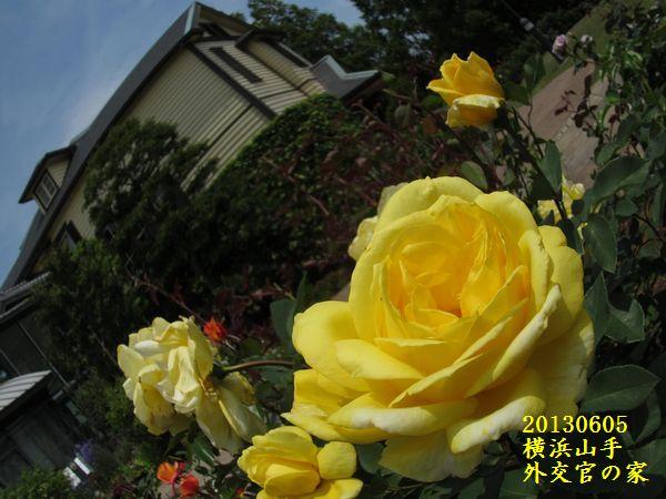 0605gaikokan02.jpg