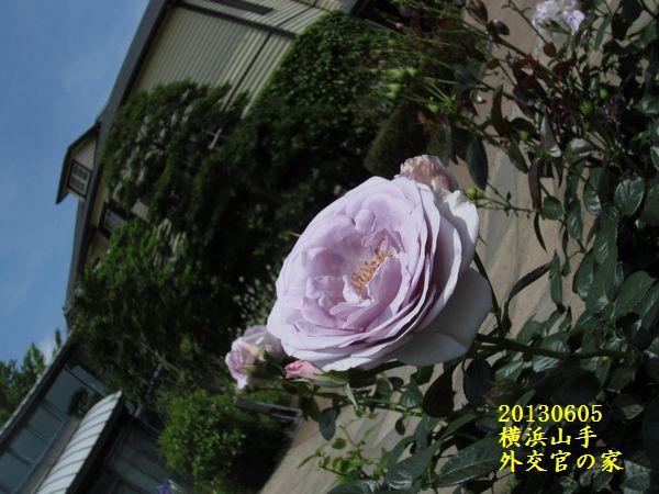 0605gaikokan03.jpg