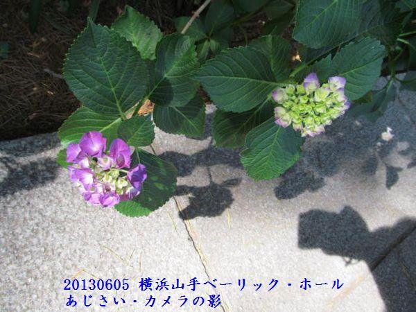 0605hool08.jpg