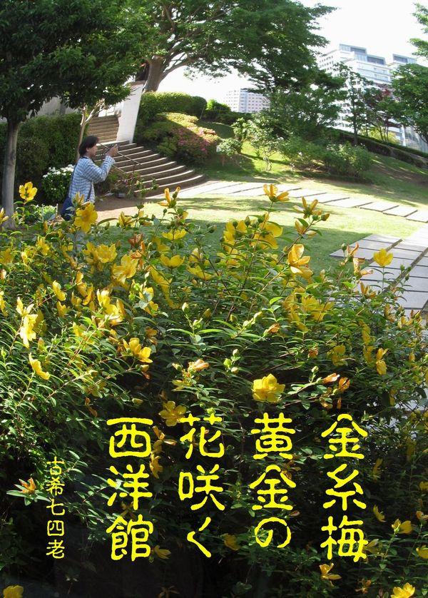20130602kinshibai-2s.jpg