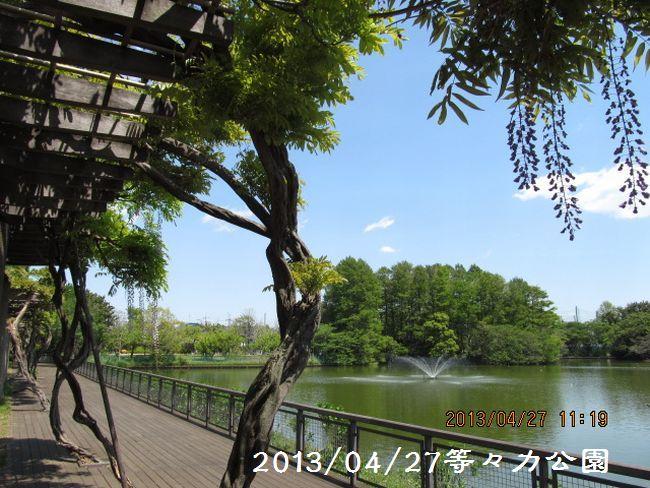 2013fiji04.jpg