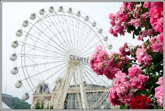 2013年5月26日ハウステンボスバラ祭 (25)