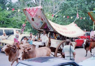 馬6マレー牛車.jpg
