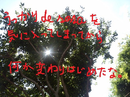 IMG_20130707_113824771.jpg