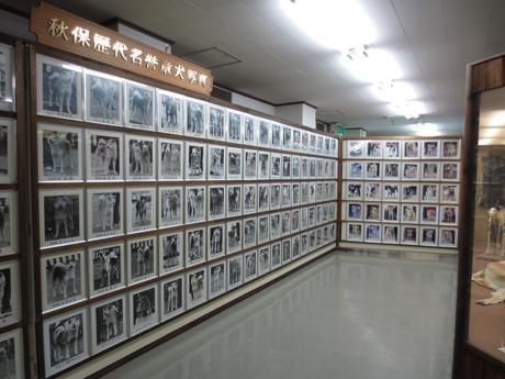 1031-6.jpg