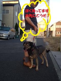 福くん19-2