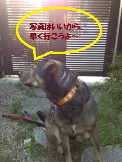 福くん20-2