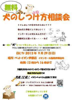 2013_9_29.jpg