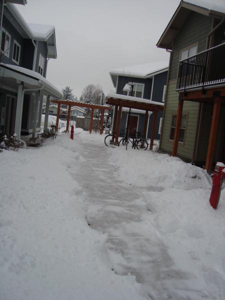 雪の日 2014 1