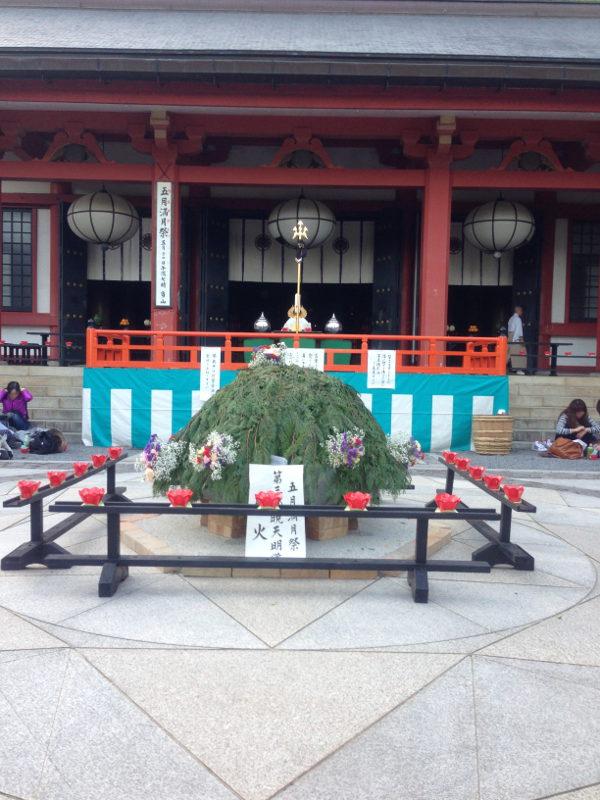 2013_Uesaku01.jpg