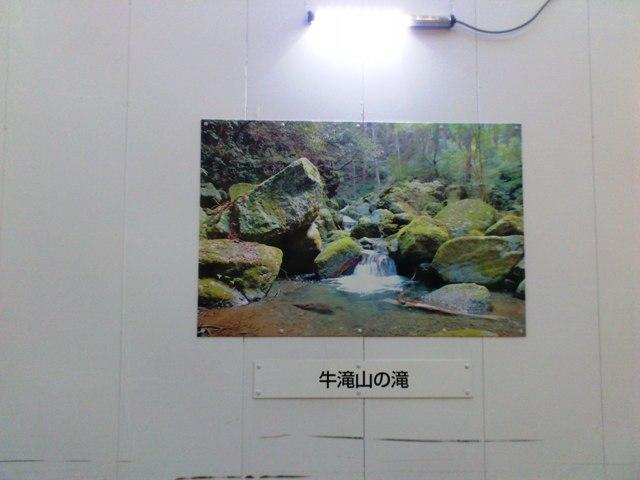2010-09-12-DSC_0410.jpg