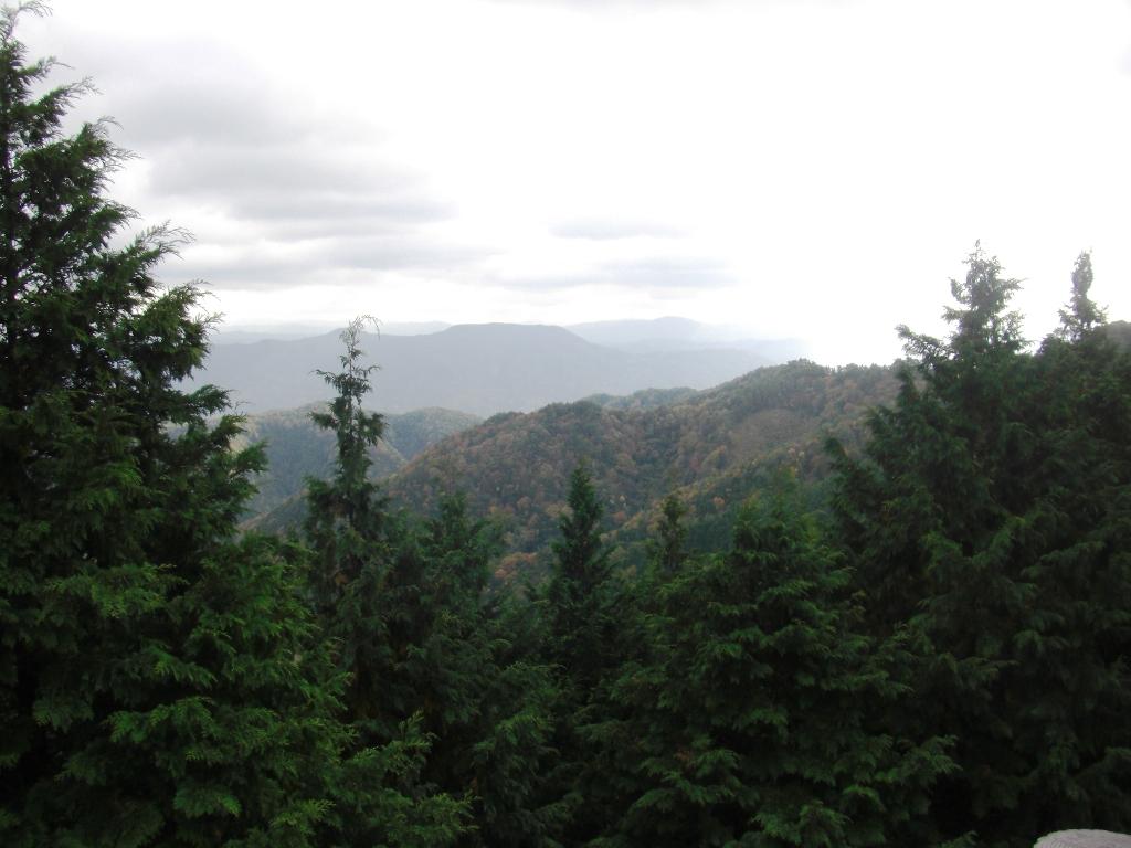 2010-11-24-CIMG0929.jpg
