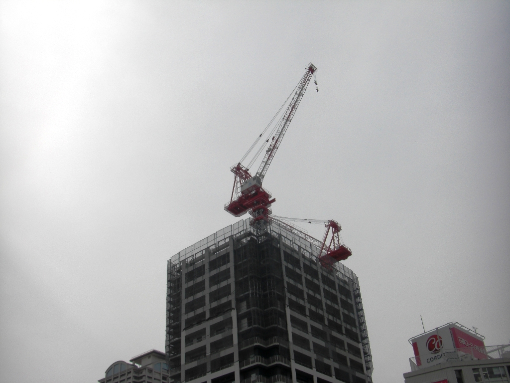 2011-03-02-CIMG1110.jpg