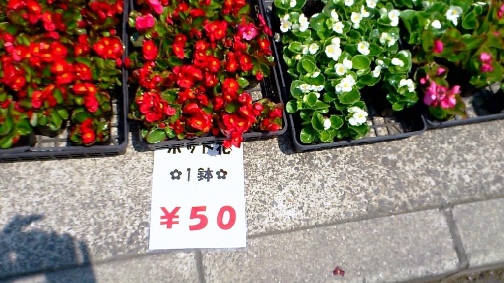 2012-05-28-2012_05_27_13_19_23.jpg