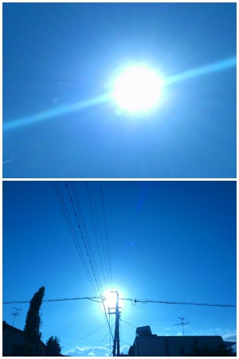 2012-11-01-PhotoGrid.jpg