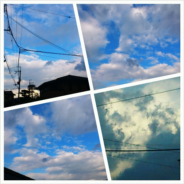 2012-11-14-PhotoGrid_1352853629769.jpg