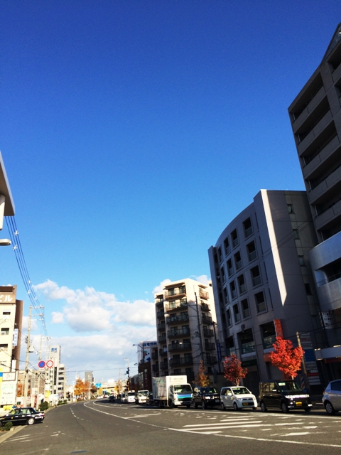 2013-11-26-IMG_0460.jpg
