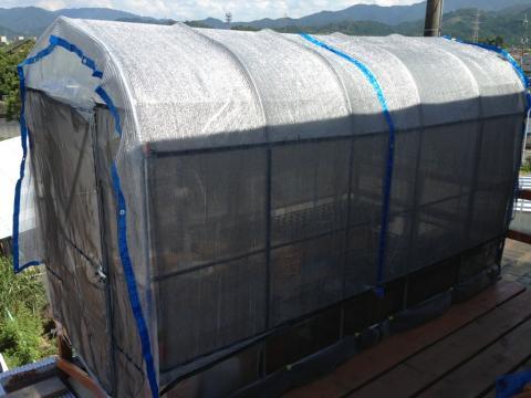 20130713温室