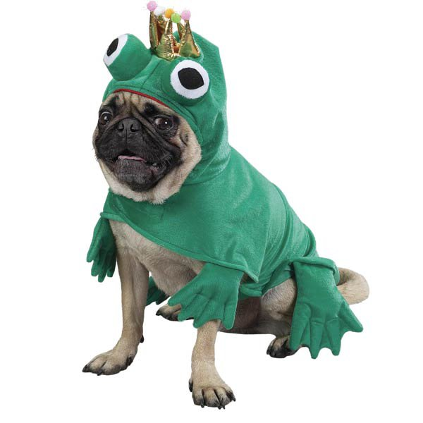 39a304c7eb8b5f943242c59d7c7adc85-25-dogs-dressed-as-other-animals-for-halloween.jpg