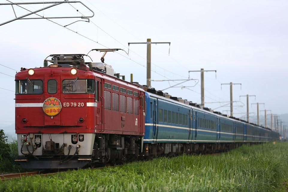 CR1A9776.jpg