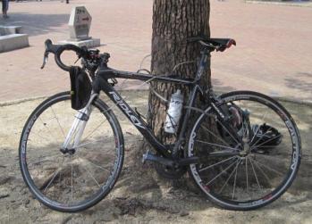 バイクを木にくくりつける