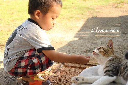 IMG_2013_09_20_9999_4男の子とネコ