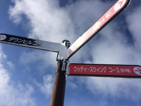札幌国際_10