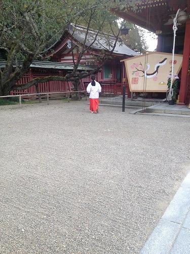 画像2012.11.1 006