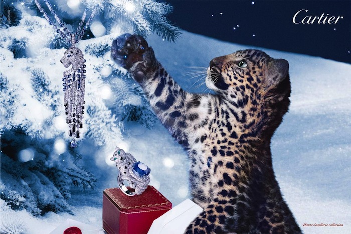 cartier-winter-tale-holiday-2012-campaign-2[1]
