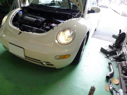 beetle_13_05_14_P1.jpg