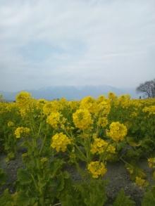 極楽手帳~写真家&タロット鑑定士EMYのブログ-DSC_0140.JPG