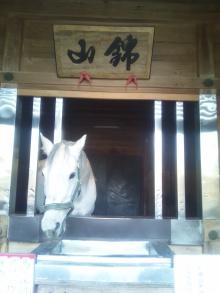 極楽手帳~写真家&タロット鑑定士EMYのブログ-DSC_0758.JPG