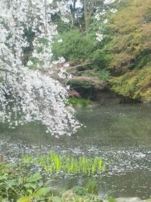 極楽手帳~写真家&タロット鑑定士EMYのブログ-DSC_0764.JPG