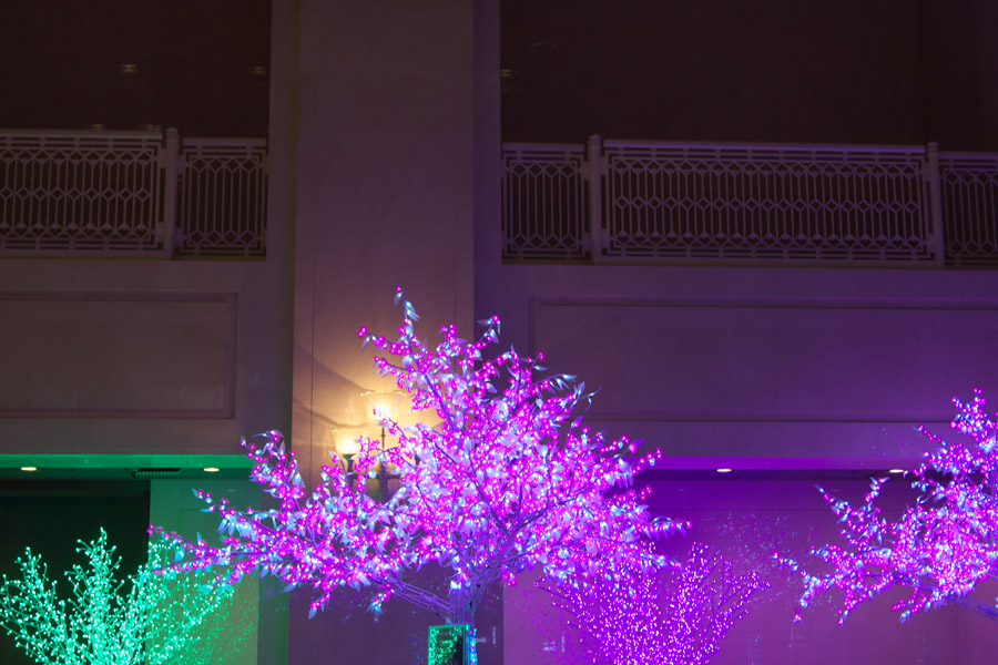20140130_大阪市役所_4