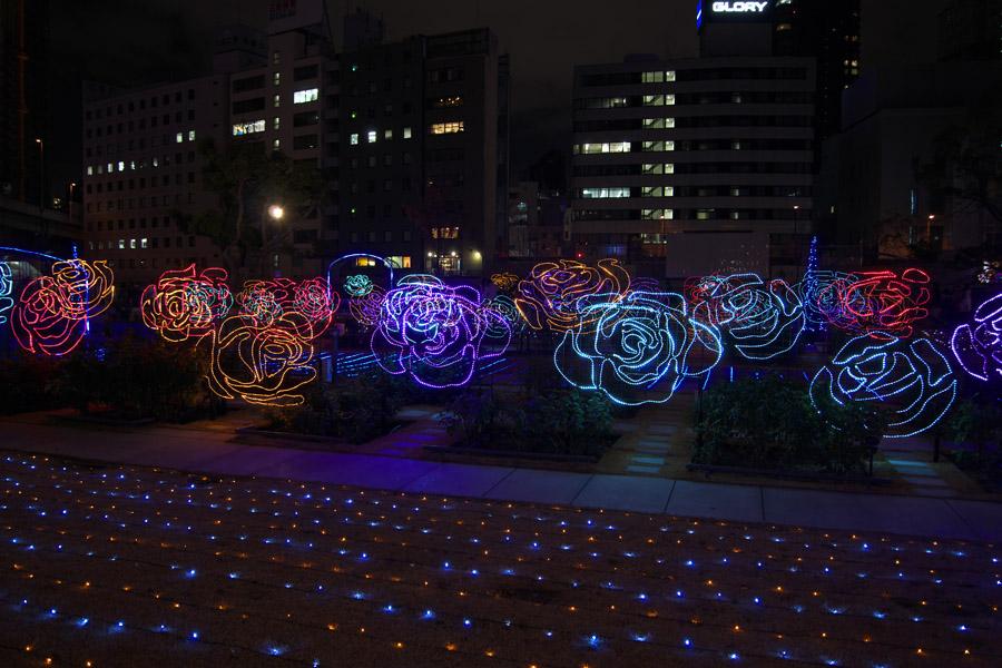 20140211_中之島バラ園あたり_7