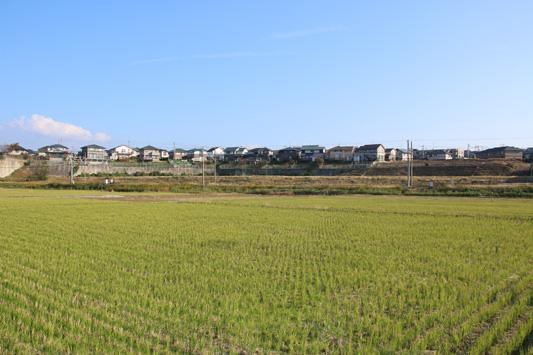 141025西鉄貝塚線 (136)のコピー