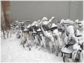 140208G 029自転車