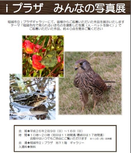 ip写真展2014-02