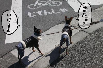 2013_02_24_9999_10.jpg
