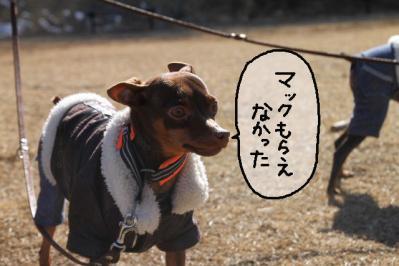 2013_02_24_9999_16.jpg
