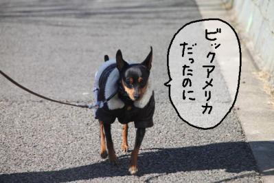 2013_02_24_9999_24.jpg