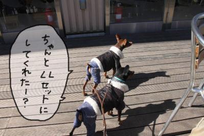 2013_02_24_9999_3.jpg