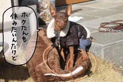 2013_02_24_9999_40.jpg