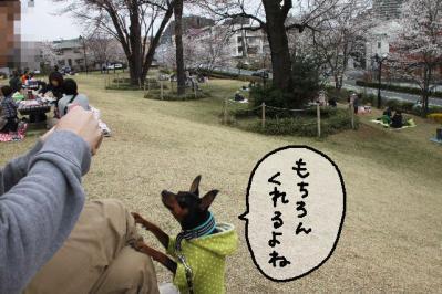 2013_03_23_9999_26.jpg